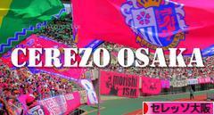にほんブログ村 サッカーブログ セレッソ大阪へ
