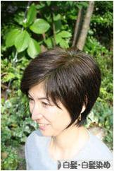 にほんブログ村 美容ブログ 白髪・白髪染めへ