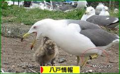 にほんブログ村 地域生活(街) 東北ブログ 八戸情報へ