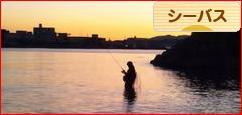 にほんブログ村 釣りブログ シーバス釣りへ