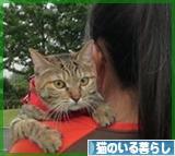 にほんブログ村 猫ブログ 猫のいる暮らしへ★いつもありがとーヾ(@^▽^@)ノヾ(@^▽^@)ノ