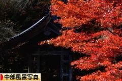 にほんブログ村 写真ブログ 中部風景写真へ