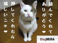にほんブログ村 漫画ブログ BL漫画感想へ
