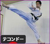 にほんブログ村 格闘技ブログ テコンドーへ