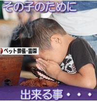 にほんブログ村 その他ペットブログ ペット葬儀・ペット霊園へ