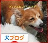 �����祉�������㏍�井�� ��������㏍�違��