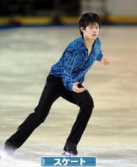 にほんブログ村 その他スポーツブログ スケートへ