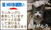 にほんブログ村 猫ブログ 猫 MIX多頭飼いへ