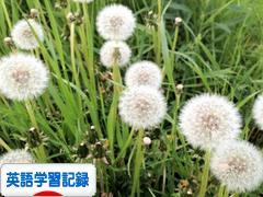 にほんブログ村 英語ブログ 英語学習記録へ