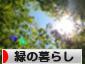 にほんブログ村 ライフスタイルブログ 緑の暮らしへ
