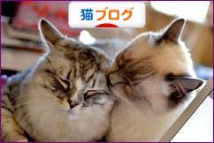 にほんブログ村 猫ブログ「ラグドール」へ