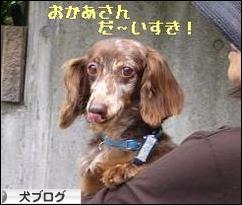 甘え上手モビ(^_^)