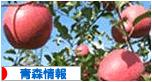 にほんブログ村 地域生活(街) <br />東北ブログ 青森県情報へ