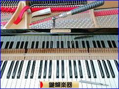 にほんブログ村 クラシックブログ 鍵盤楽器へ