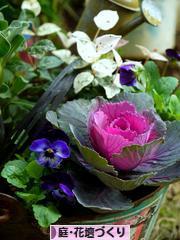 にほんブログ村 花・園芸ブログ 庭・花壇づくりへ