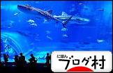 にほんブログ村 写真ブログ 沖縄風景写真へ