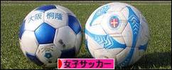 にほんブログ村 サッカーブログ 女子サッカー・なでしこジャパンへ
