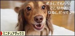 �����祉�������㏍�井�� ��������㏍�� �����������ャ�≪����������鴻����潟�����