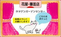 にほんブログ村 花ブログ 花屋・園芸店へ