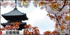 にほんブログ村 地域生活(街) 関西ブログ 京都府情報へ