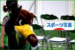 にほんブログ村 写真ブログ スポーツ写真へ
