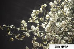 にほんブログ村 美術ブログ 絵画へ