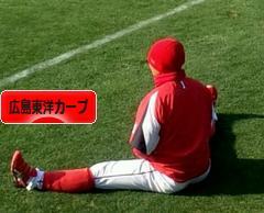 にほんブログ村 野球ブログ 広島東洋カープへ
