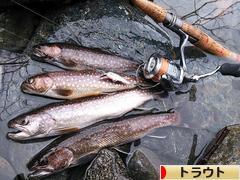 にほんブログ村 釣りブログ トラウトフィッシングへ