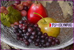 にほんブログ村 写真ブログ デジタル一眼(OLYMPUS)へ