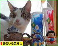 にほんブログ村 猫ブログ 猫のいる暮らしへ★ありがとねー(^○^)(^○^)(^○^)(^○^)(^○^)(^○^)(^○^)