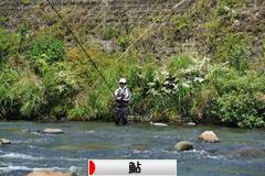にほんブログ村 釣りブログ 鮎釣りへ