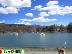 にほんブログ村 地域生活(街) 中部ブログ 八ヶ岳情報へ