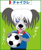 にほんブログ村 犬ブログ チャイニーズクレステッドドッグへ