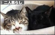 にほんブログ村 ライフスタイルブログ 二人暮らしへ