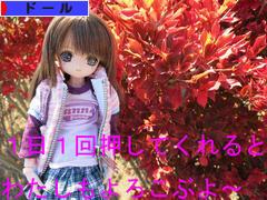 にほんブログ村 コレクションブログ ドールへ