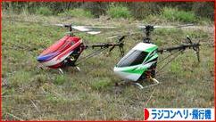 にほんブログ村 その他趣味ブログ ラジコンヘリ・飛行機へ