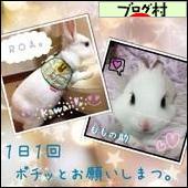 にほんブログ村 うさぎブログ 白うさぎ・日本白色種へ
