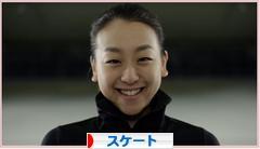 にほんブログ村 その他スポーツブログ スケート・フィギュアスケートへ