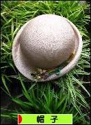 にほんブログ村 ファッションブログ 帽子へ