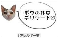 にほんブログ村 猫ブログ アレルギー猫へ