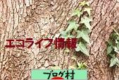 にほんブログ村 ライフスタイルブログ エコライフへ