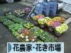 にほんブログ村 花ブログ 花農家・花き市場へ