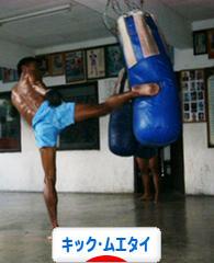 にほんブログ村 格闘技ブログ キックボクシング・ムエタイへ