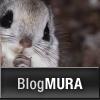 にほんブログ村 写真ブログ 写真家へ