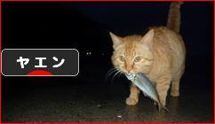 にほんブログ村 釣りブログ ヤエン釣りへ