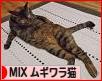 にほんブログ村 猫ブログ MIXムギワラ猫へ