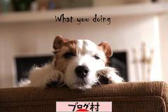 にほんブログ村ブログランキング参加用リンク一覧