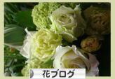 にほんブログ村 花ブログへ