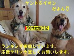 にほんブログ村 その他日記ブログ その他50代女性日記へ