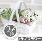 にほんブログ村 花・園芸ブログ サノフラワーへ